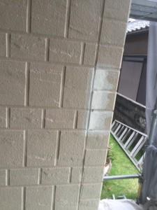 1階 壁上塗り 完了_3291 (3)