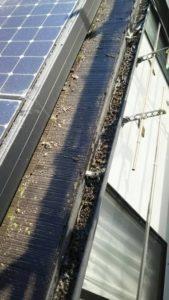 浜松市の雨漏り修繕前の屋根