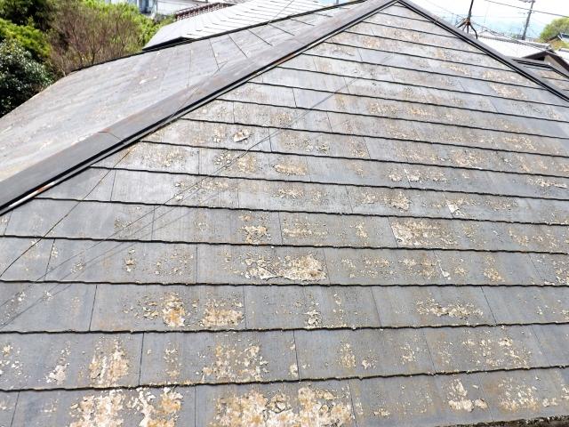 屋根・壁板金工事