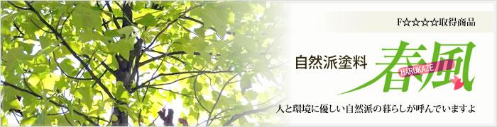 自然派塗料『春風』のご紹介です。